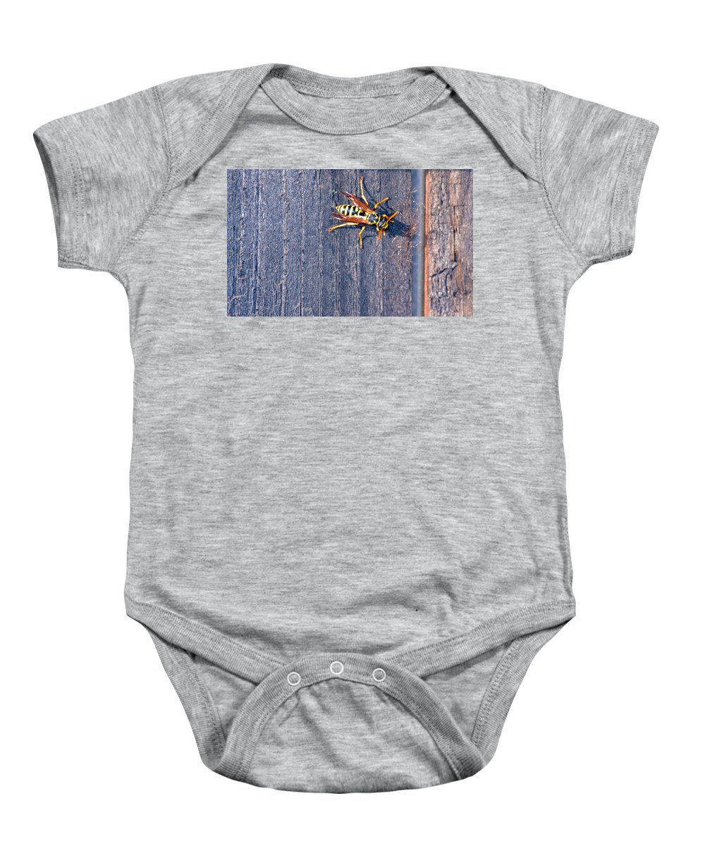 Fence Baby Onesie featuring the photograph Wasp 3 by Brent Dolliver