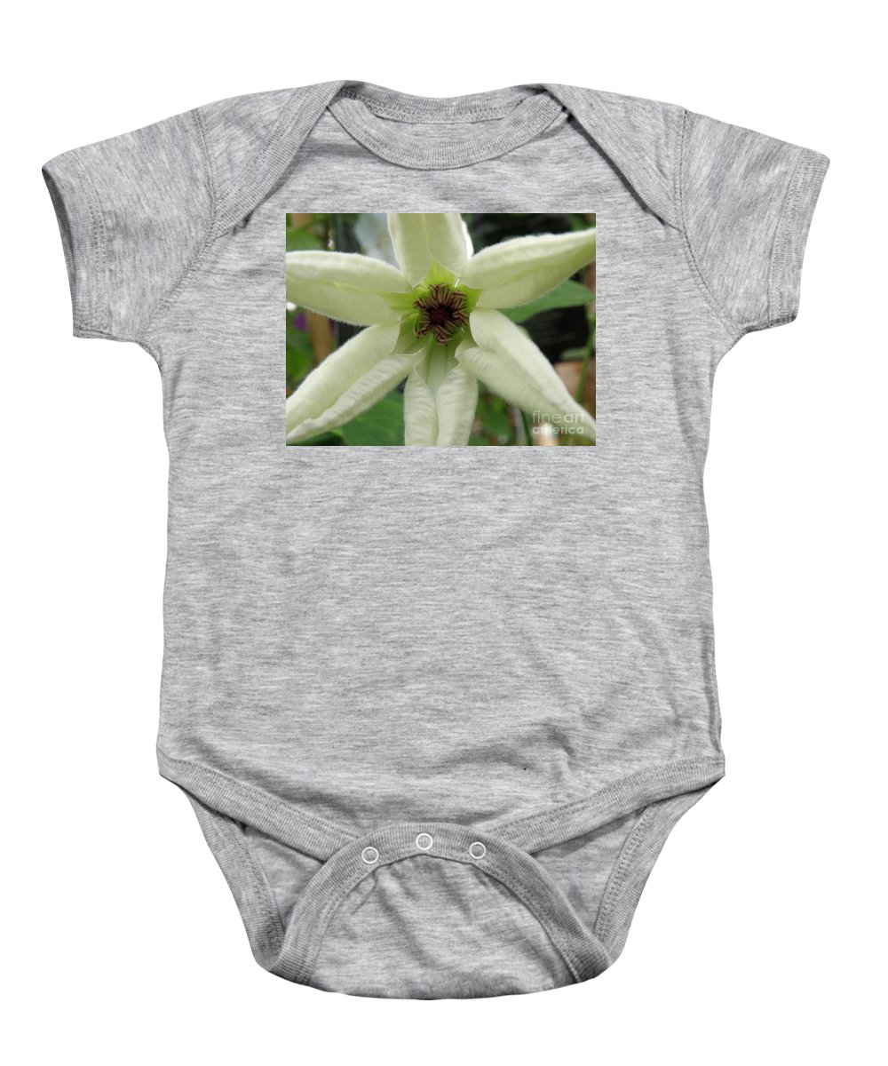 Clematis Baby Onesie featuring the photograph White Clematis by Lainie Wrightson