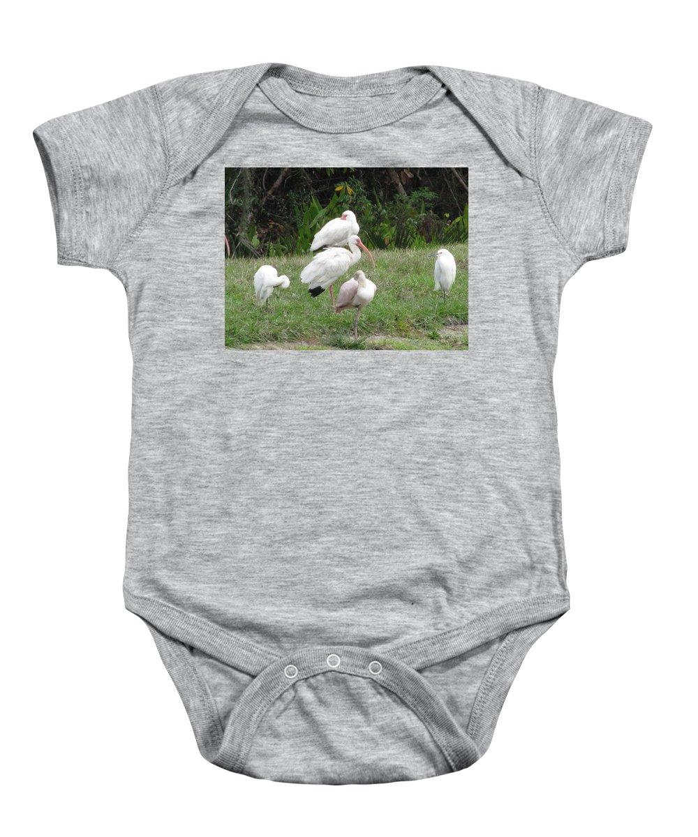 Landscape Baby Onesie featuring the photograph White Ibis Bliss by Ellen Meakin