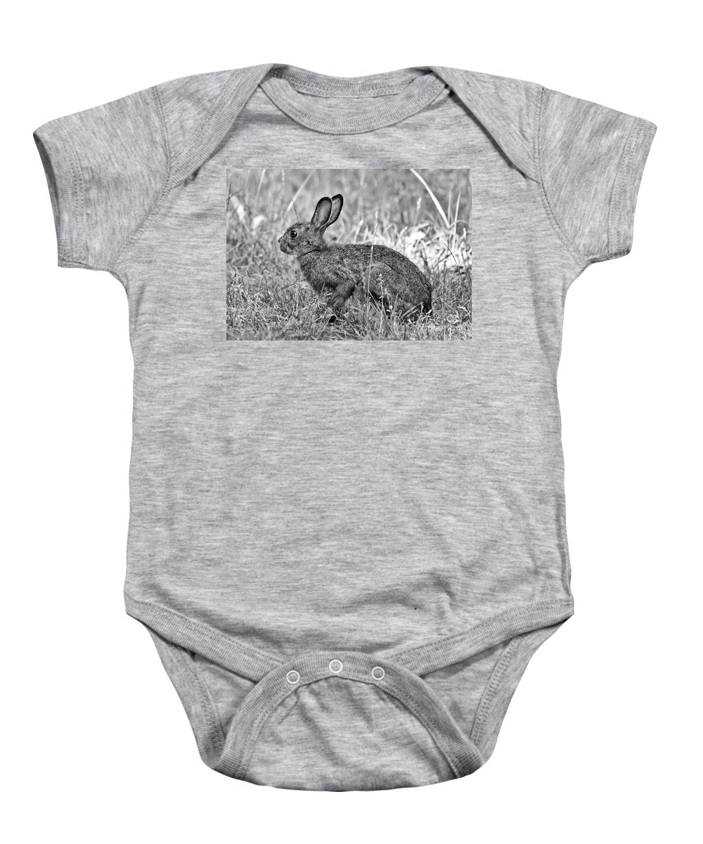 Hare Baby Onesie featuring the photograph Wild Hare by Cheryl Baxter
