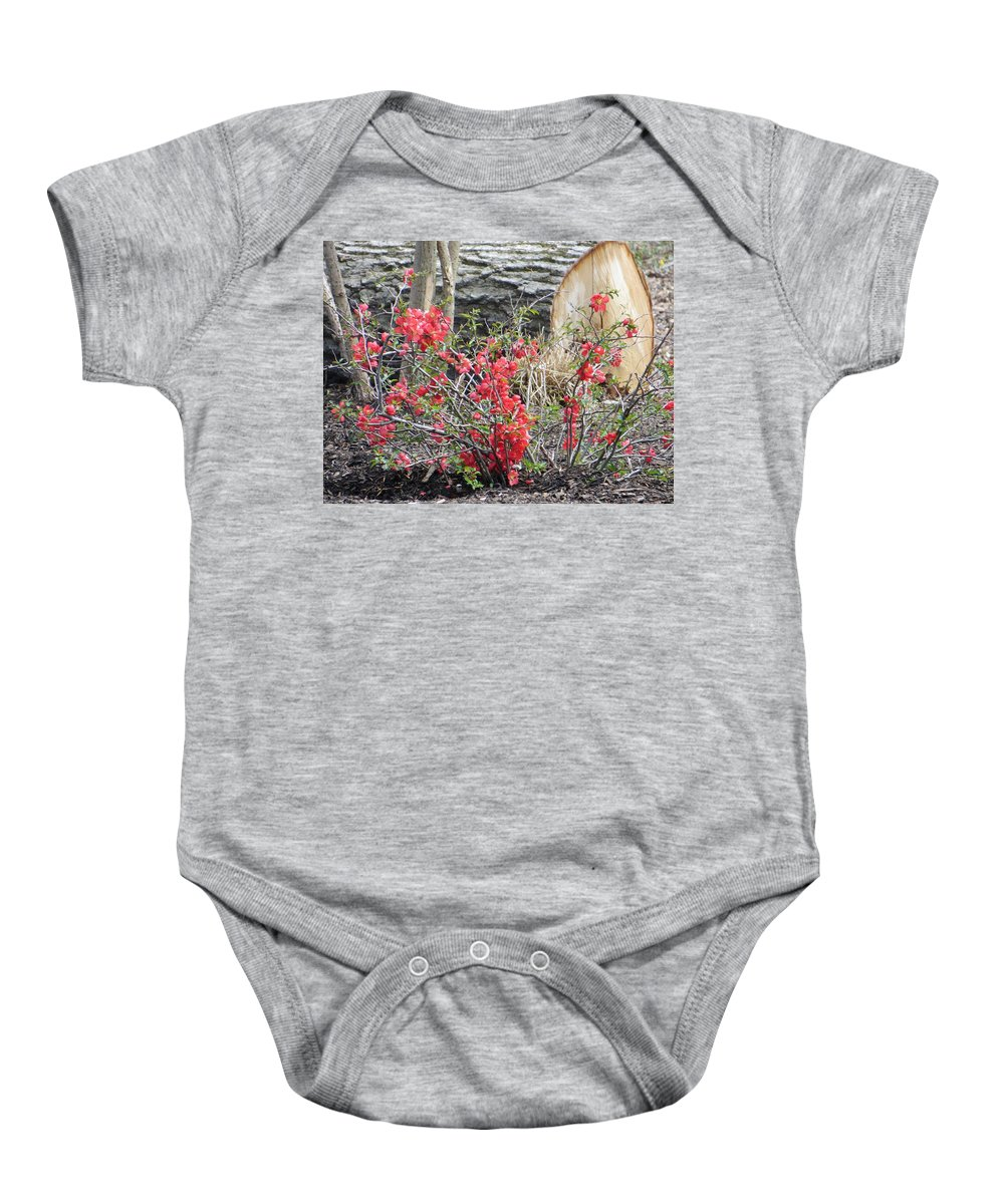 Woods' Rose Baby Onesie featuring the photograph Wild Roses In Wood by Sonali Gangane