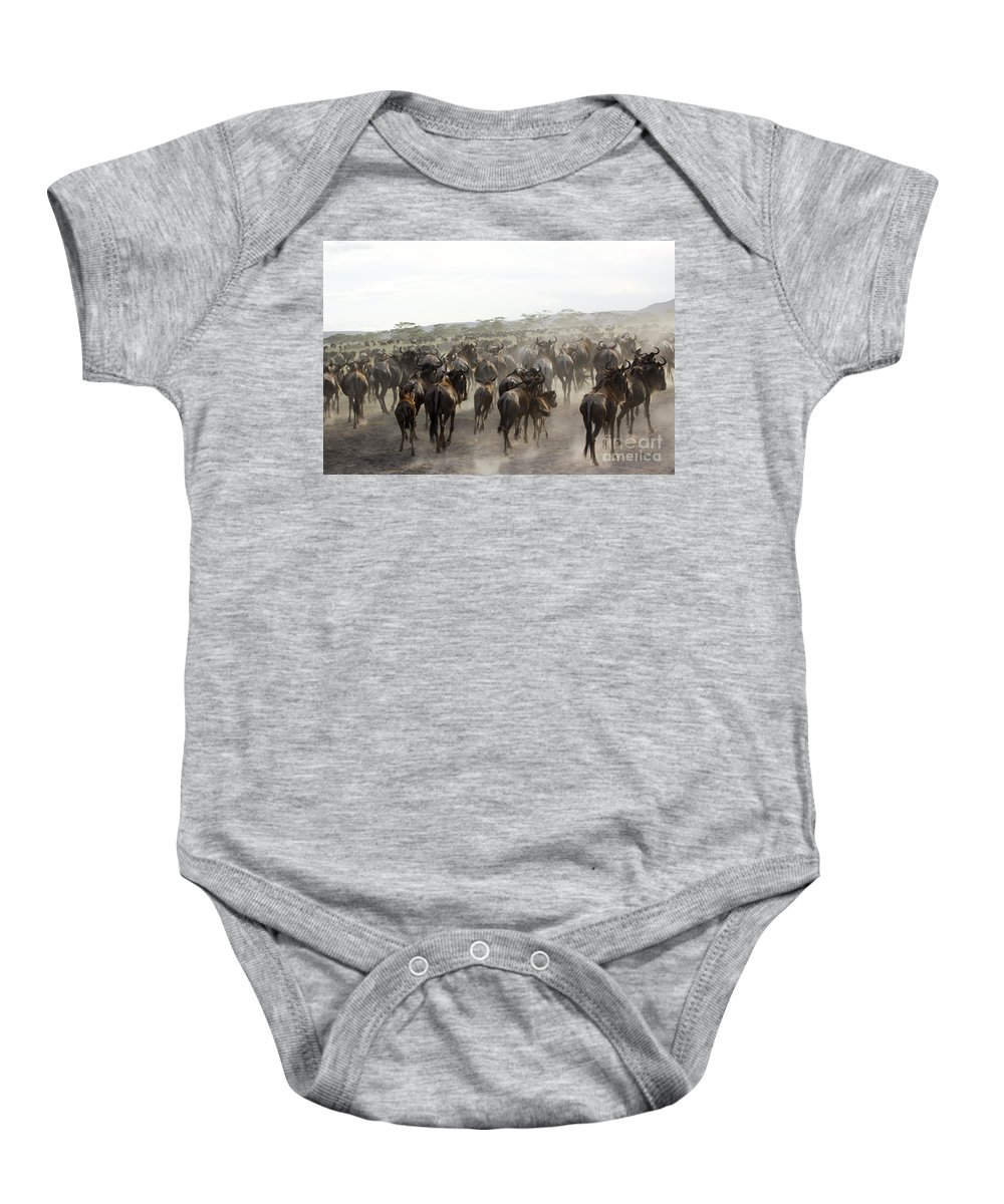 Migrating Baby Onesie featuring the photograph Wildebeest Migration by Gilad Flesch