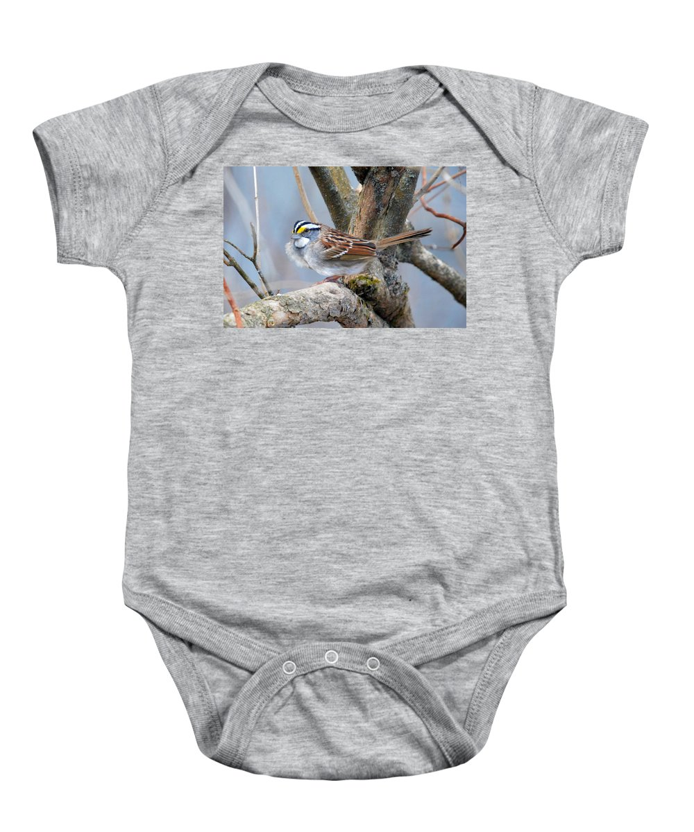White-throated Sparrow Baby Onesie featuring the photograph Windy Perch by Thomas Phillips