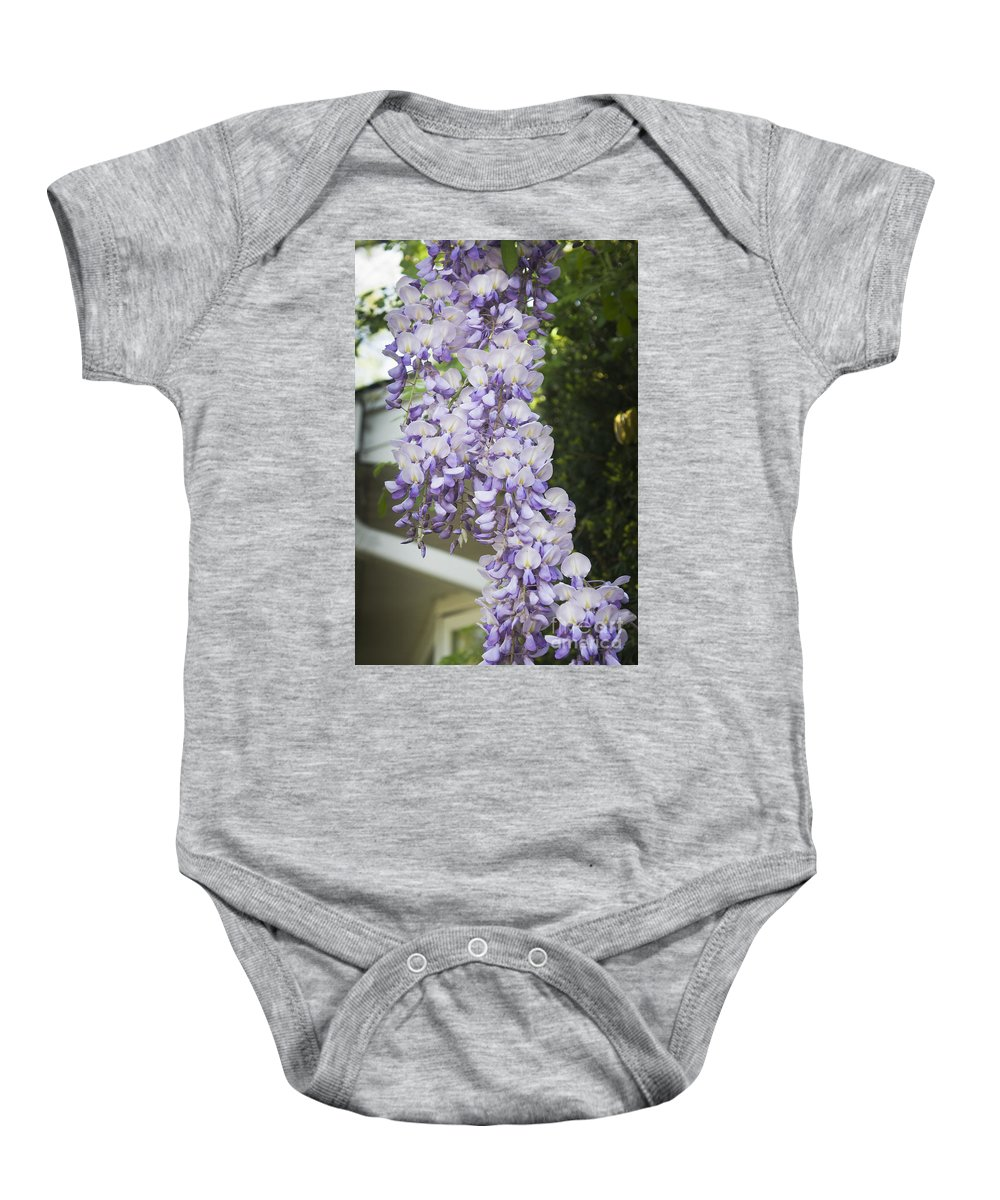 Wisteria Baby Onesie featuring the photograph Wisteria Vine 2 by Teresa Mucha
