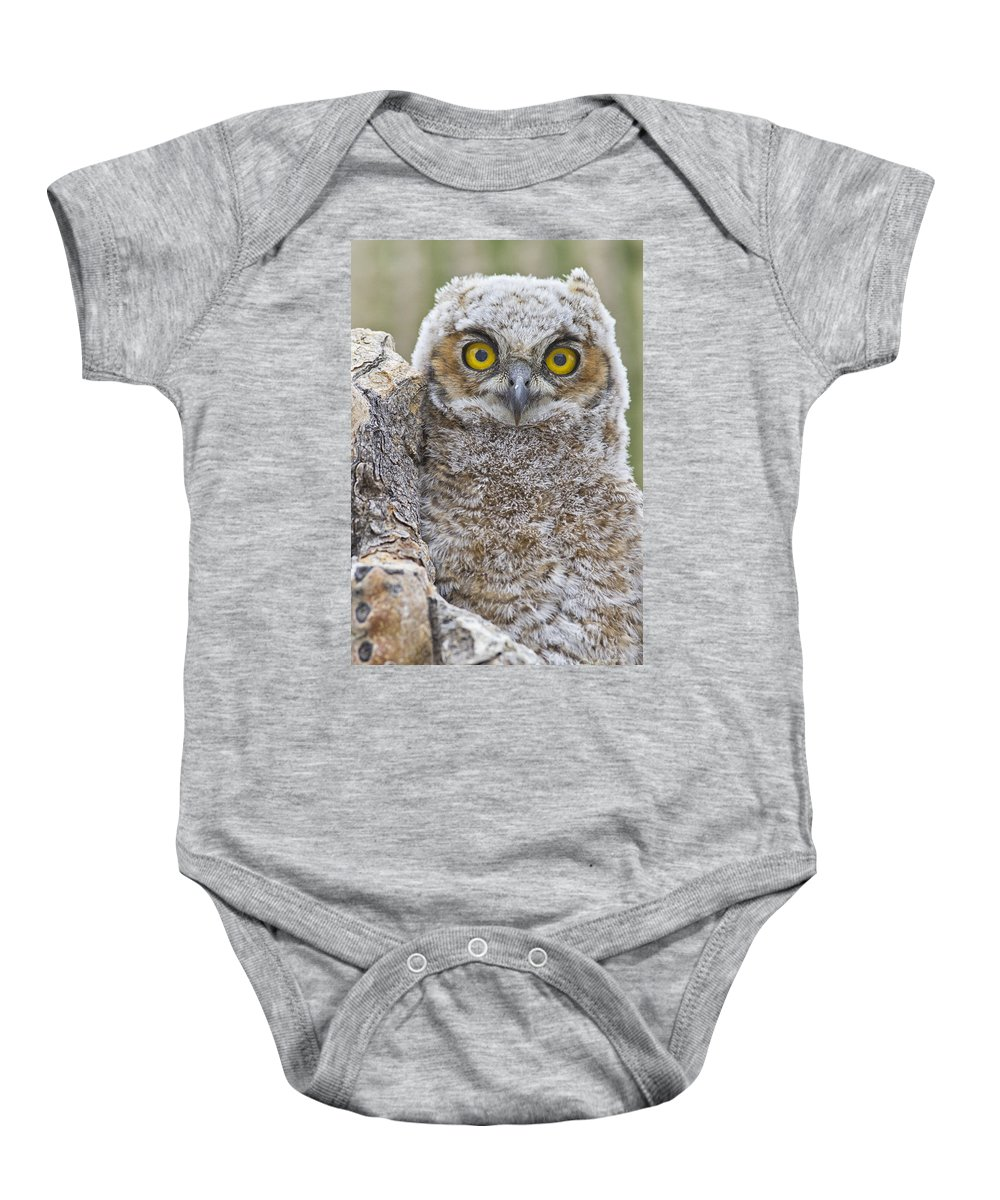 Owl Baby Onesie featuring the photograph Yellow Eyes by Bryan Keil