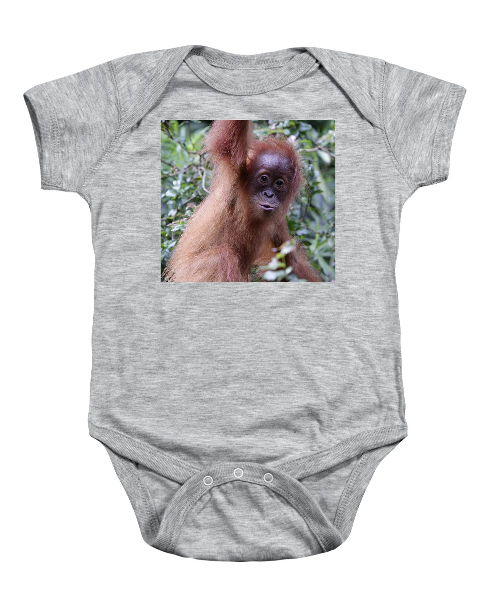 Singapore Baby Onesie featuring the pyrography Young Orangutan Kiss by Shoal Hollingsworth