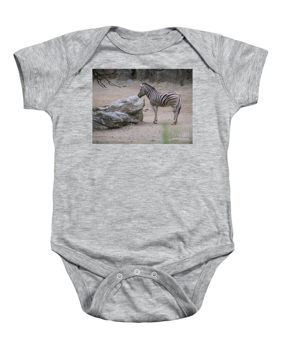 Zebra Baby Onesie featuring the photograph Zebra And Rock by Heather Jane