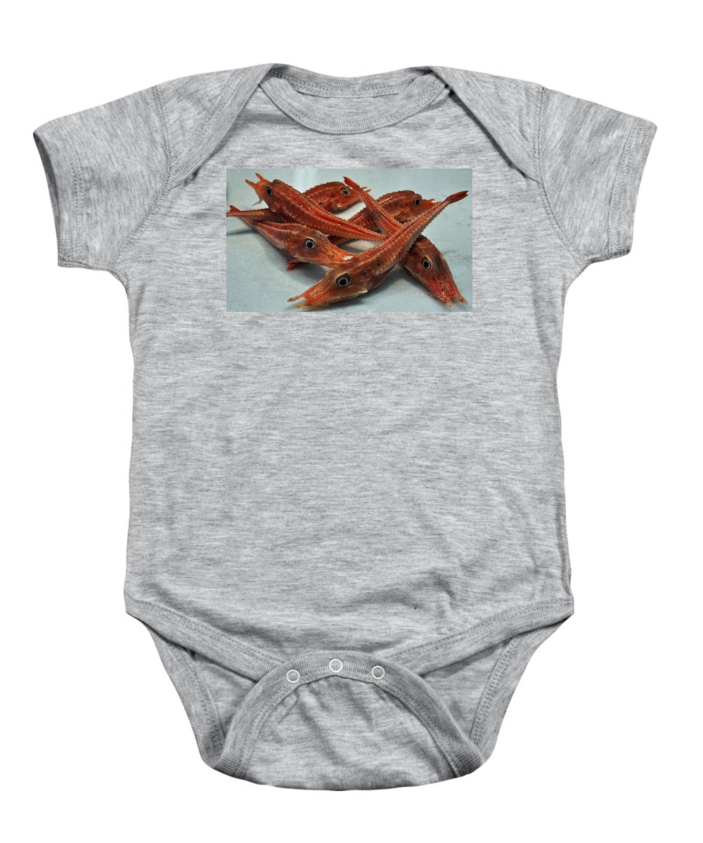 Red Cherry Shrimp Neocaridina Denticulata Sinensis Baby Onesie featuring the photograph Red Cherry Shrimp In The Market by Mary Machare