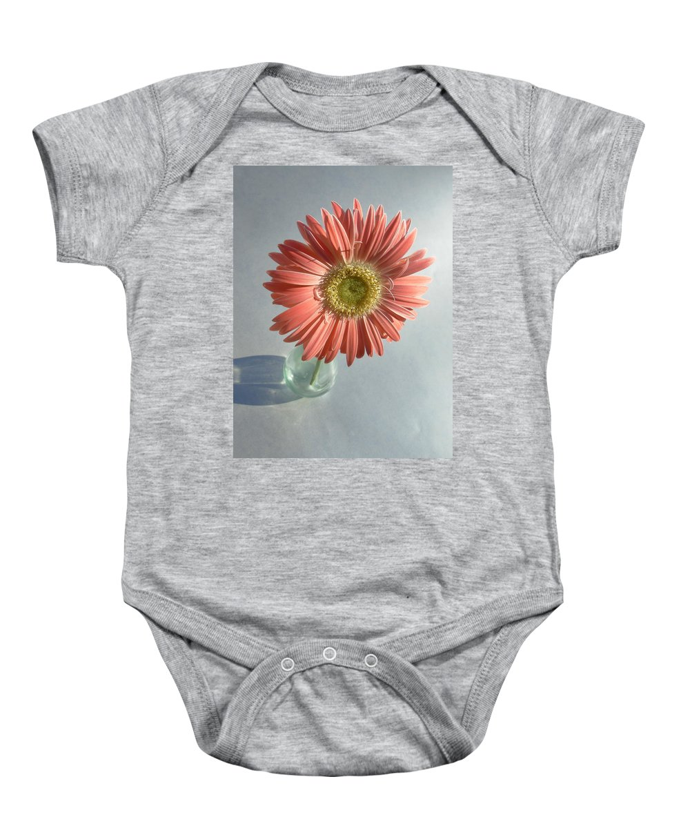 Gerbera Photographs Baby Onesie featuring the photograph 0738 by Kimberlie Gerner