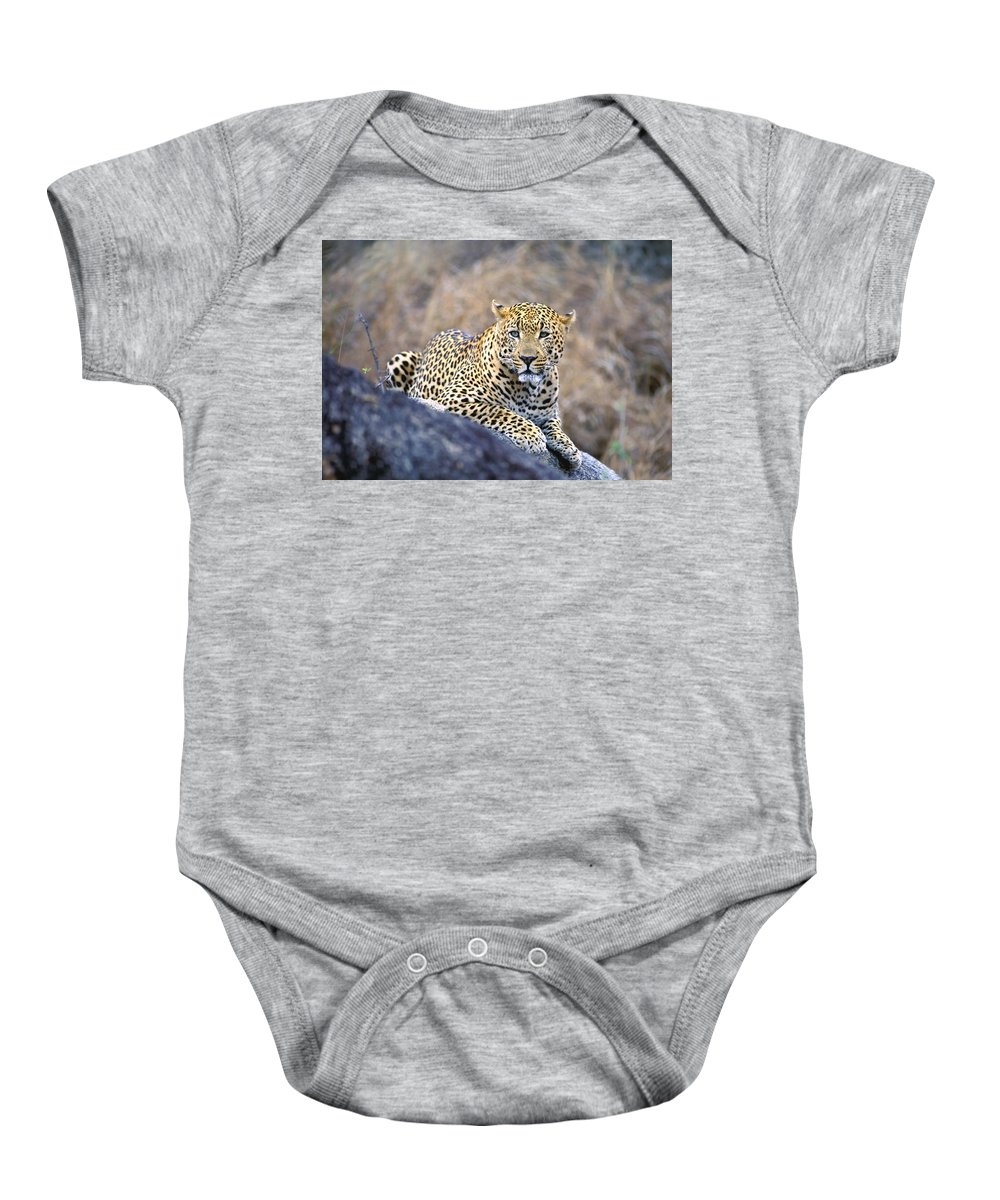 Animal Baby Onesie featuring the photograph Male Leopard by John Pitcher