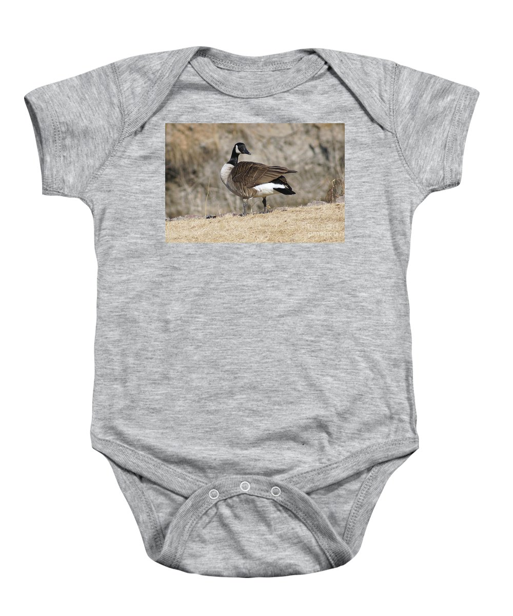 Goose Baby Onesie featuring the photograph Goose by Lori Tordsen