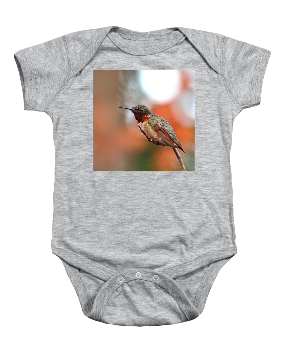 Hummingbird Baby Onesie featuring the photograph All In Red by Travis Truelove