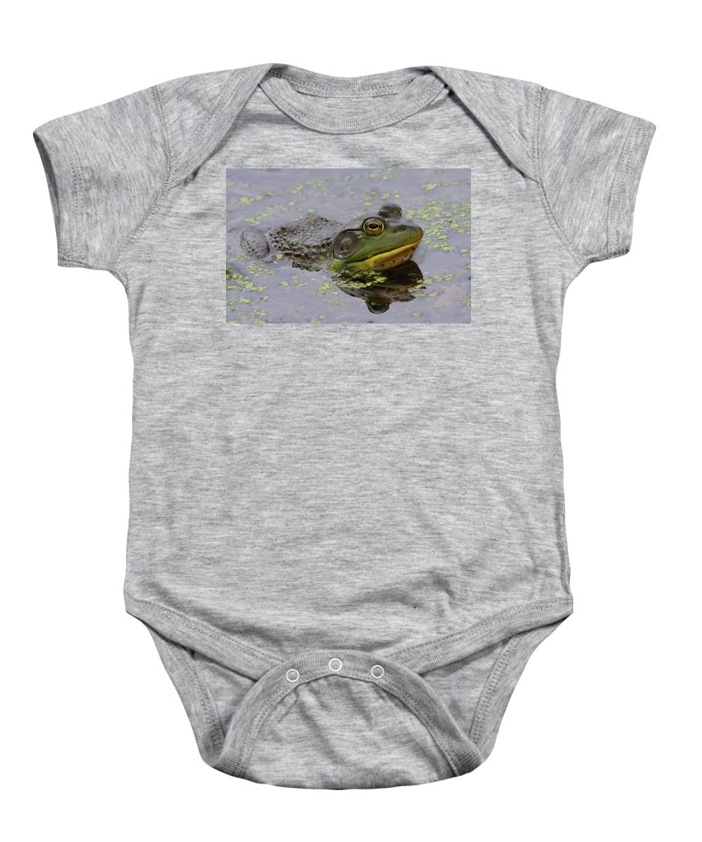 Frog Baby Onesie featuring the photograph American Bullfrog by Bruce J Robinson