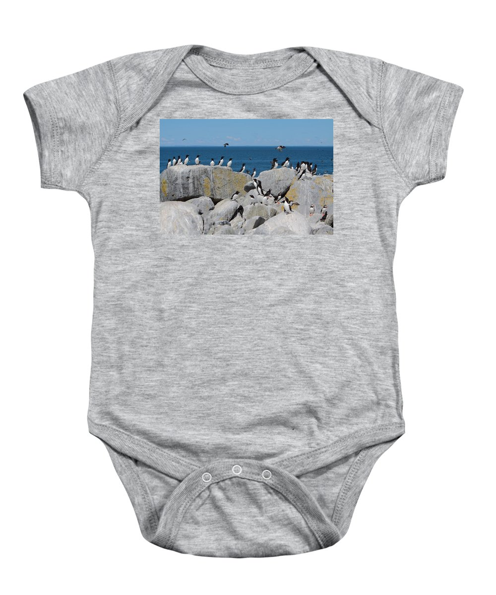 Puffin Baby Onesie featuring the photograph Auk Island by Bruce J Robinson