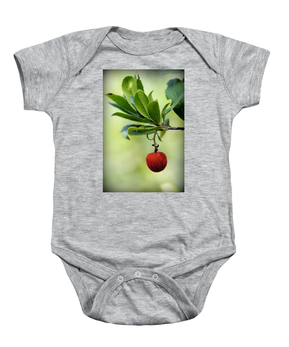 Up Baby Onesie featuring the photograph Autumn Fruits In Red by Pedro Cardona Llambias