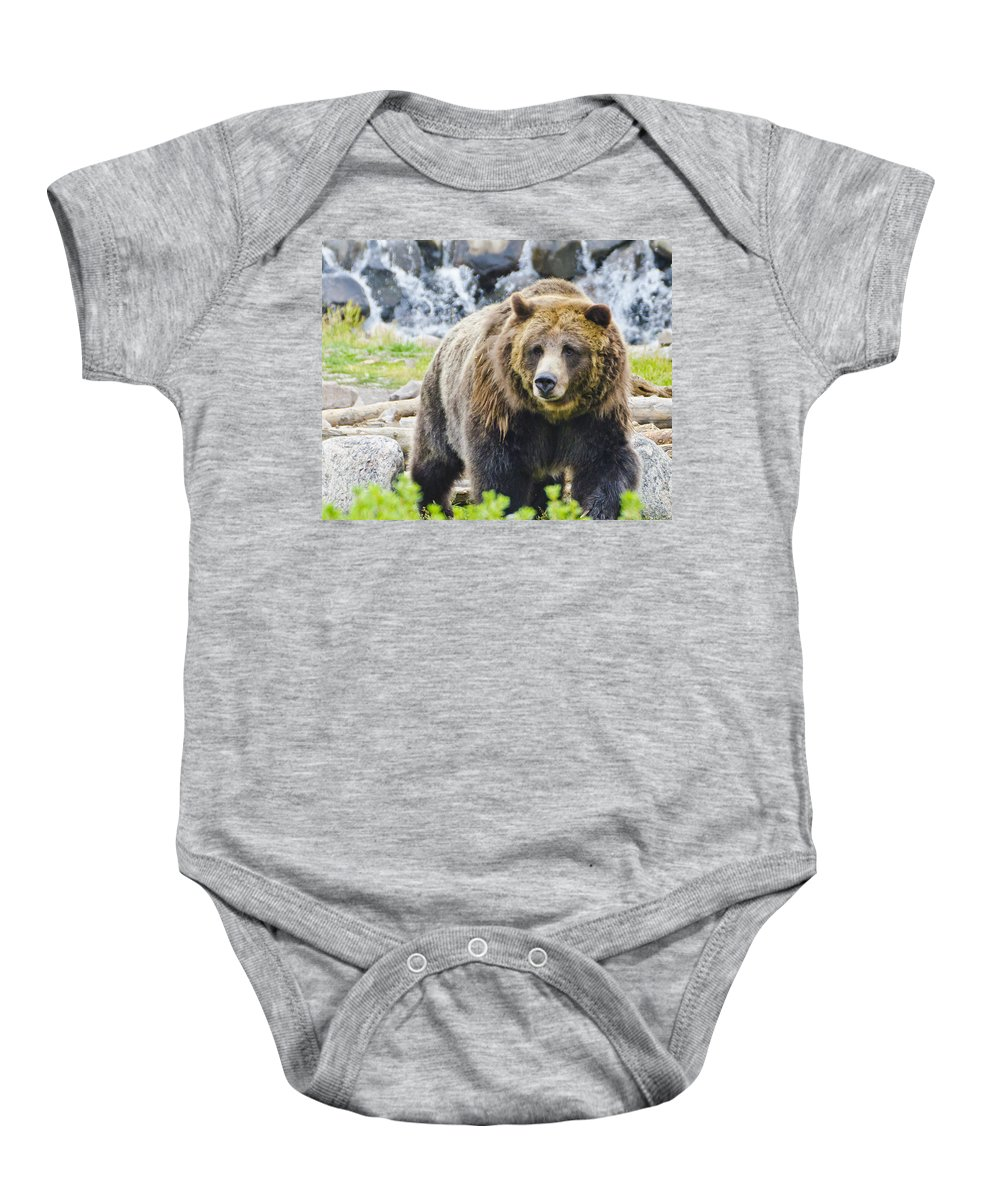 Bera On The Browl Baby Onesie featuring the photograph Bear On The Prowl. by Jon Berghoff
