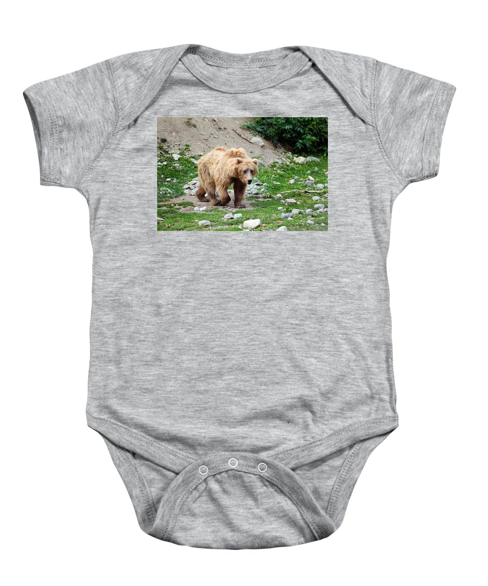 Animal Baby Onesie featuring the photograph Brown Bear by Paul Fell