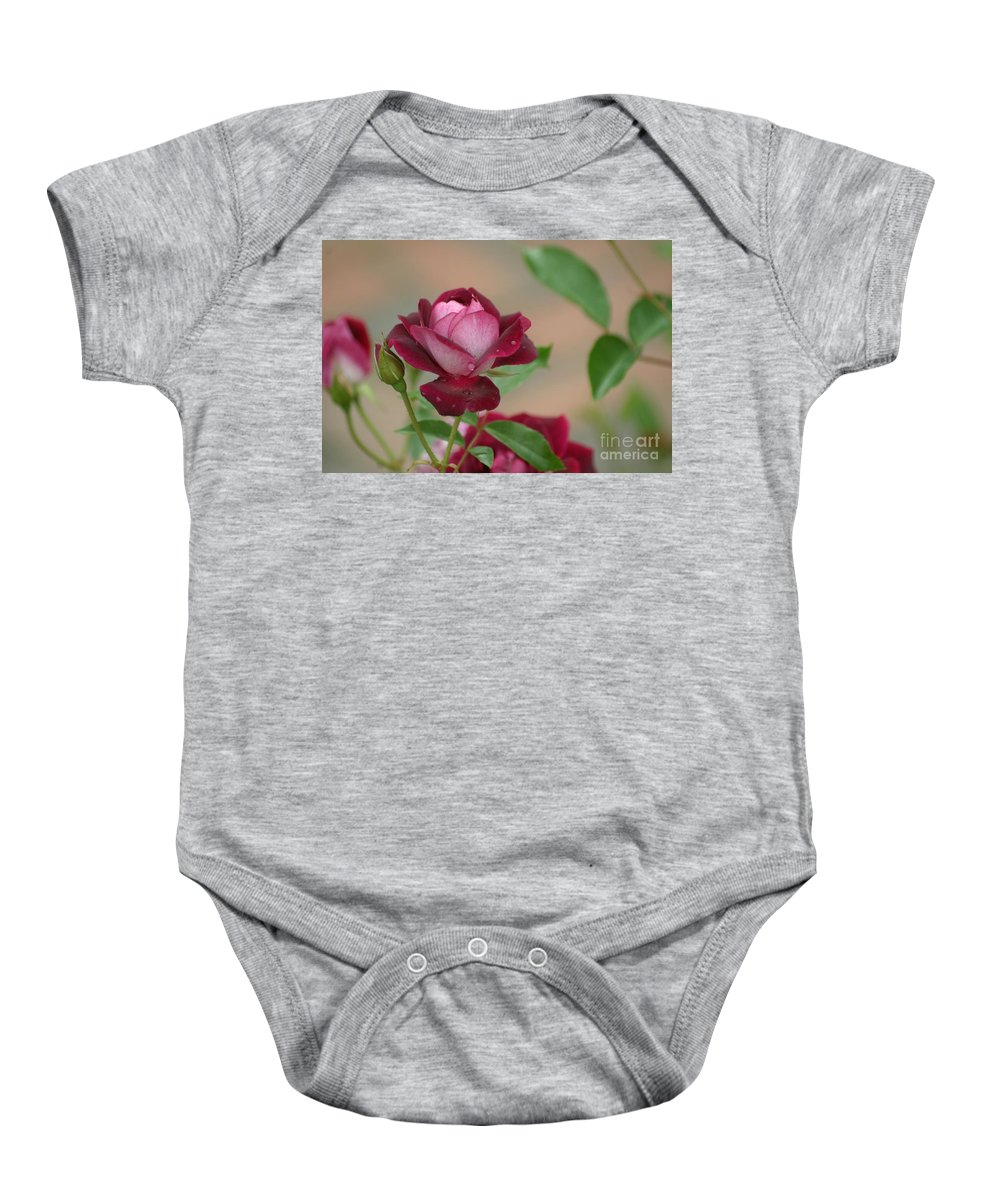 Rose Baby Onesie featuring the photograph Burgundy Iceberg by Living Color Photography Lorraine Lynch
