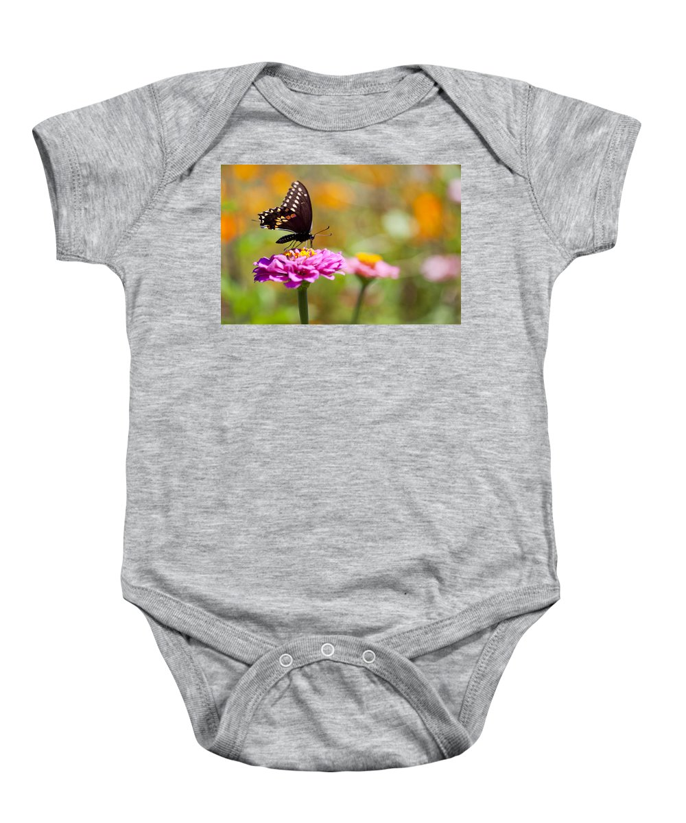 Butterfly Baby Onesie featuring the photograph Butterfly On Pink Zinnia by Amy Jackson