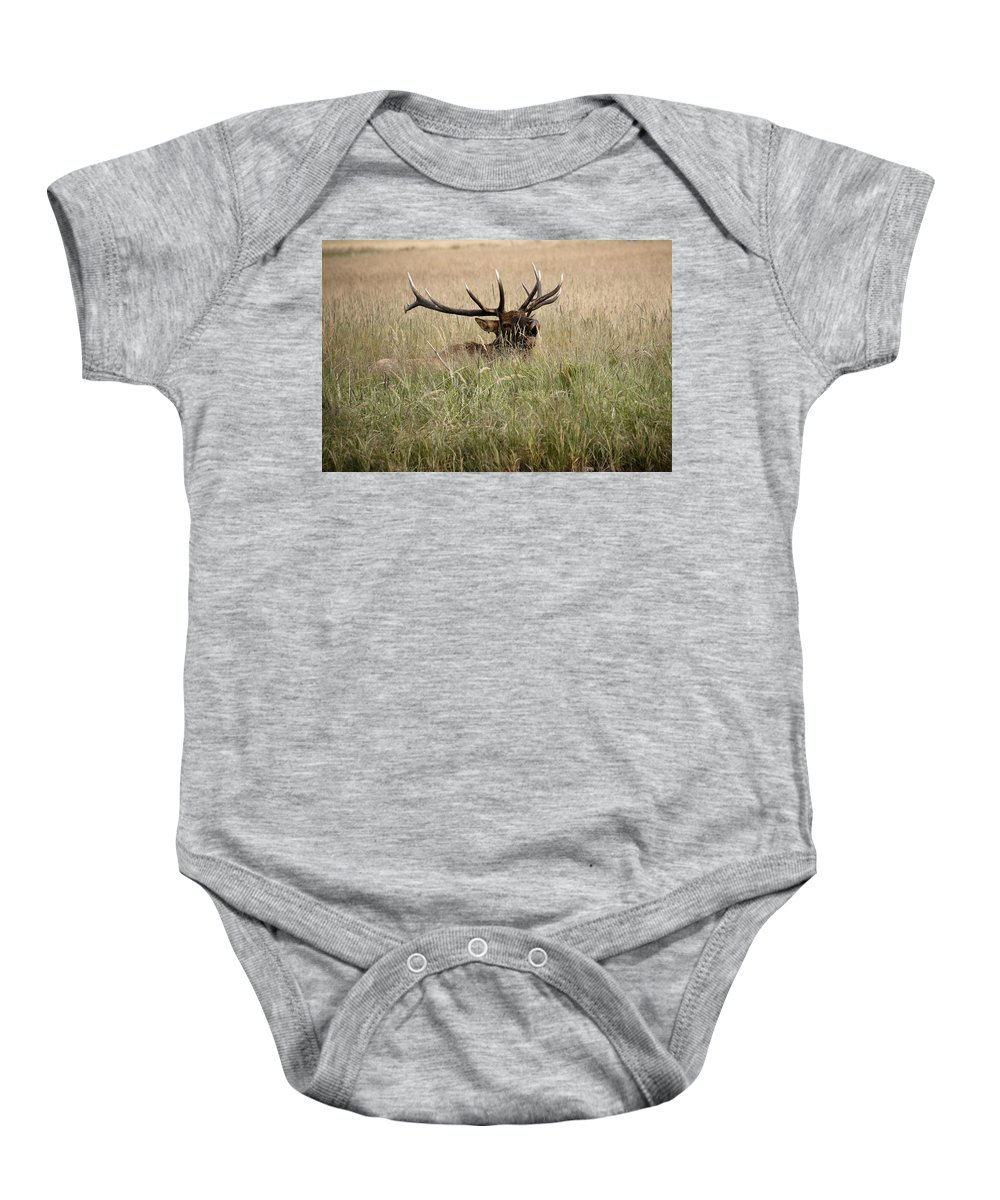 Elk Baby Onesie featuring the photograph Call Of The Wild 1 by Marilyn Hunt