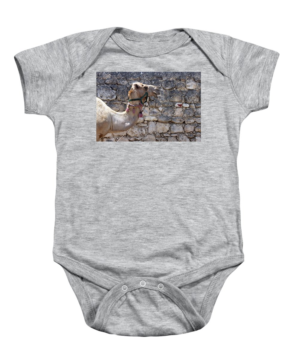 Camel Baby Onesie featuring the photograph Camel At Sebastia by Munir Alawi