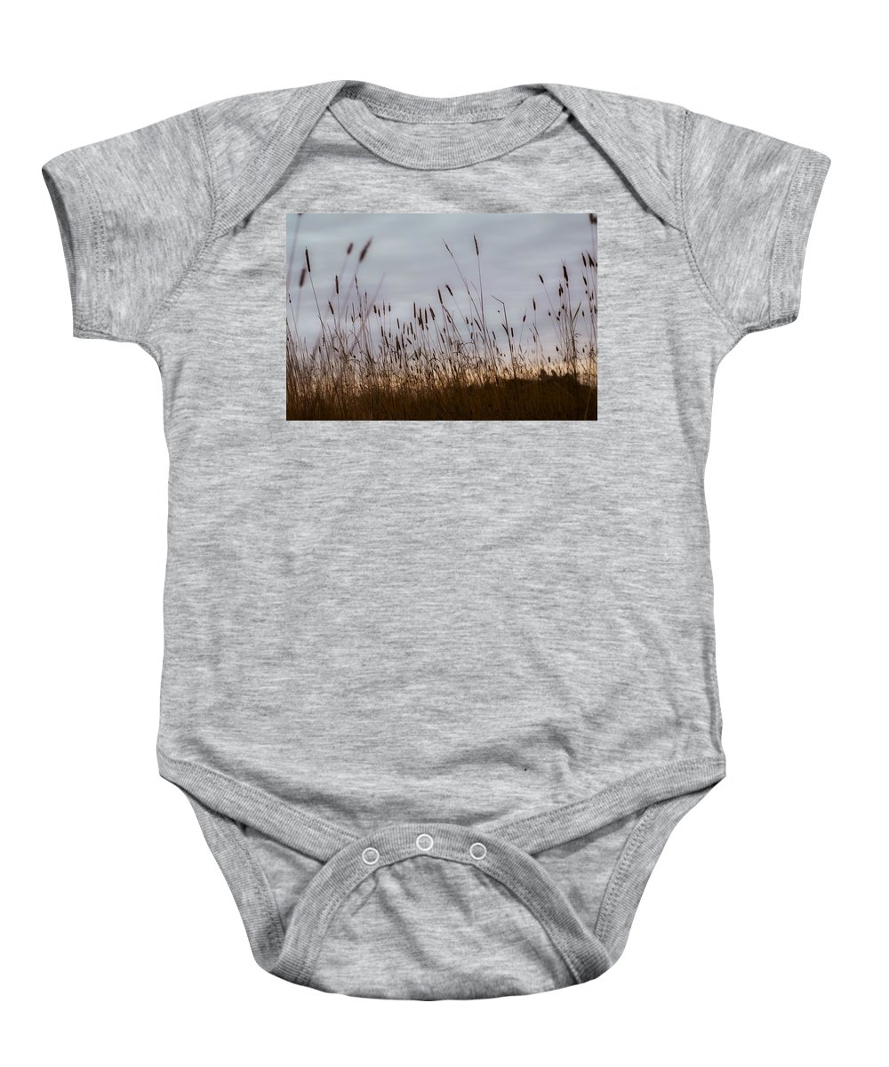Bullrush Baby Onesie featuring the photograph Cat Tails by Chris Knorr