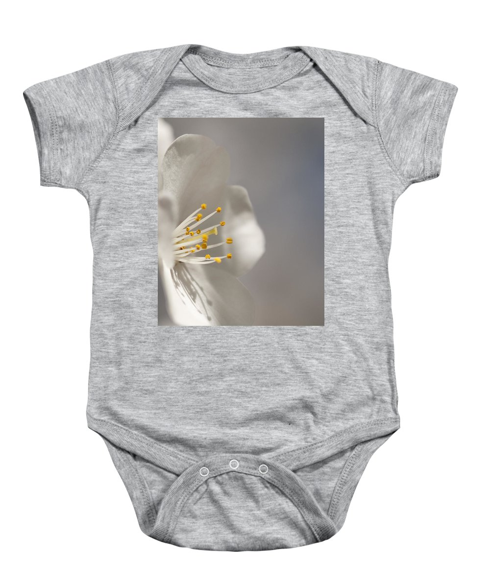 Prunus � Yedoensis Baby Onesie featuring the photograph Cherry Blossom In Light And Shadow by Kathy Clark
