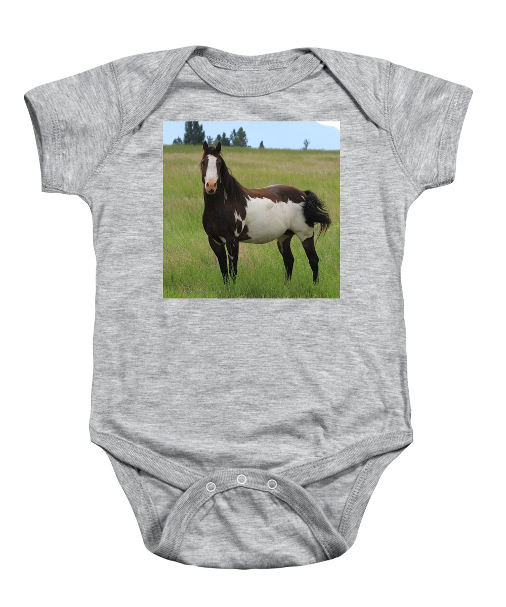 Brown Baby Onesie featuring the photograph Chestnut Overo Paint Stallion by Karon Melillo DeVega