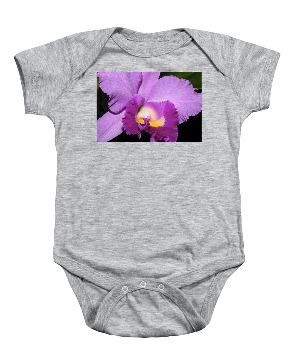 Orchid Baby Onesie featuring the photograph Classic Purple Orchid by Phyllis Denton