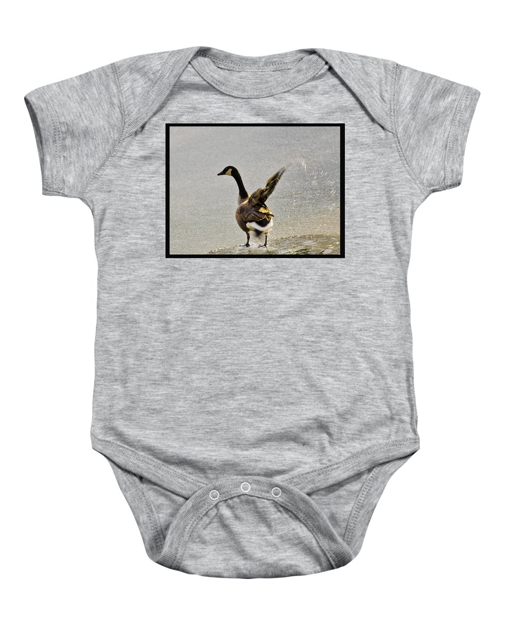 Usa Baby Onesie featuring the photograph Cold Goose Bath by LeeAnn McLaneGoetz McLaneGoetzStudioLLCcom
