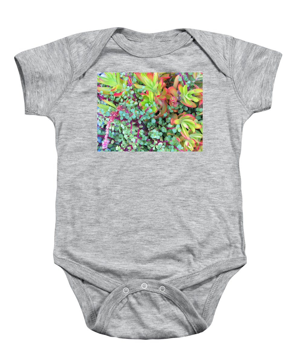 Colorful Baby Onesie featuring the photograph Colorful Succulent Plants For You by Carl Deaville