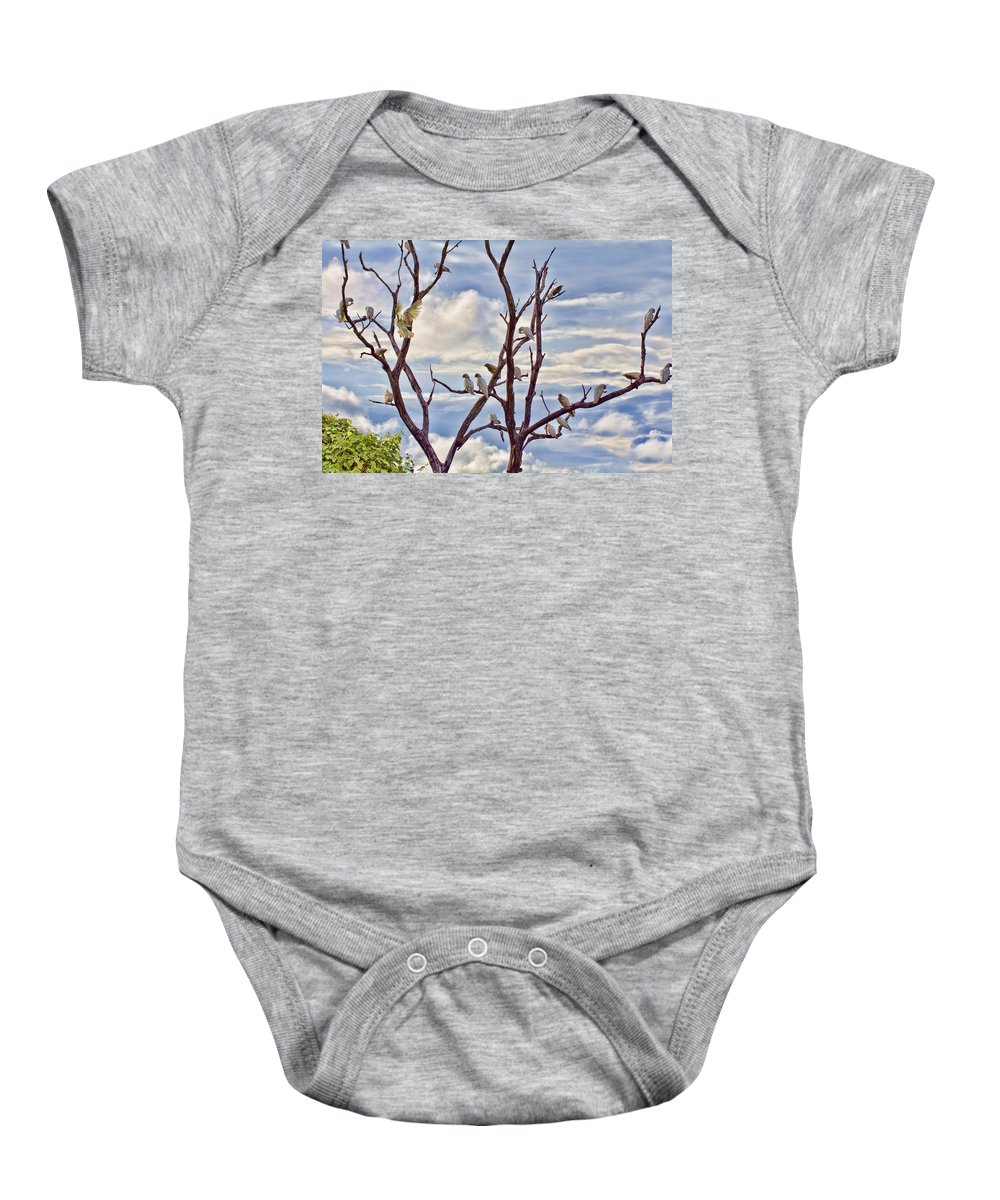 Corellas Baby Onesie featuring the photograph Corella Tree by Douglas Barnard