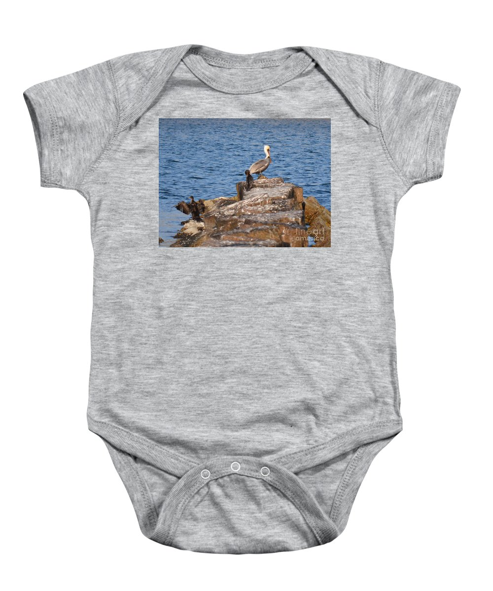 Birds Baby Onesie featuring the photograph Cormorants And Pelican by Donna Brown