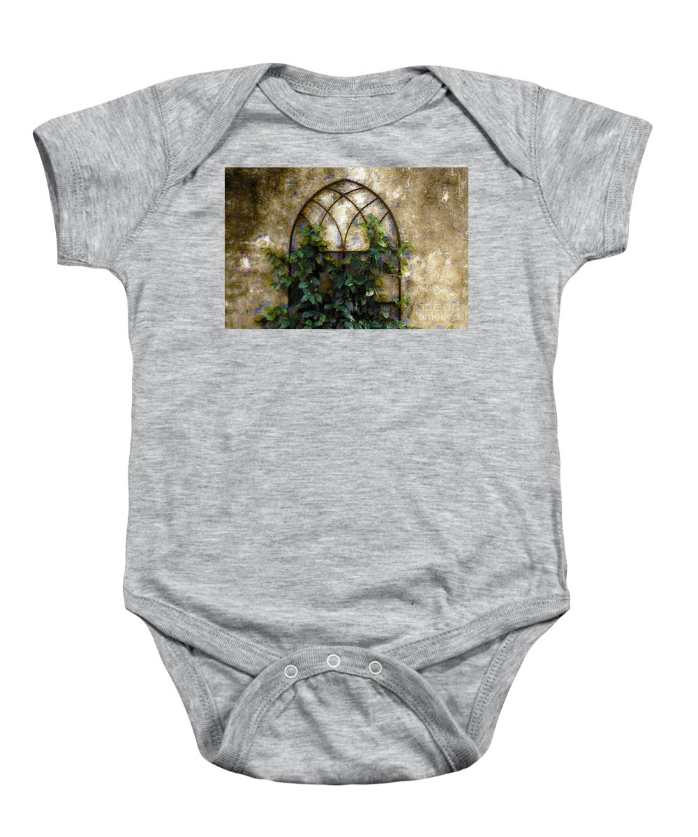 Iron Gate Baby Onesie featuring the photograph Creeping Vine 1 by Donna Bentley