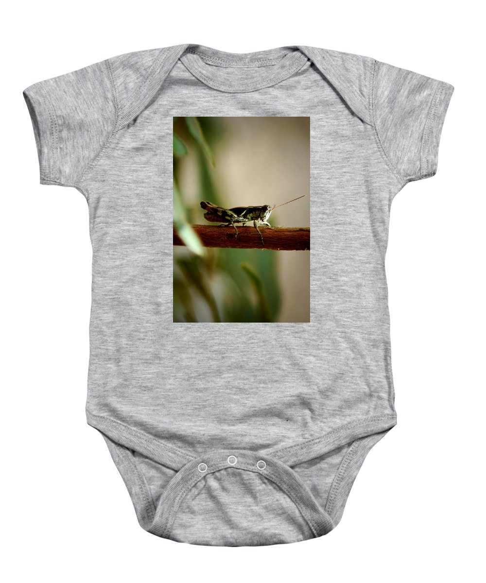 Grasshopper Baby Onesie featuring the photograph Crossing The Ravine by David Weeks