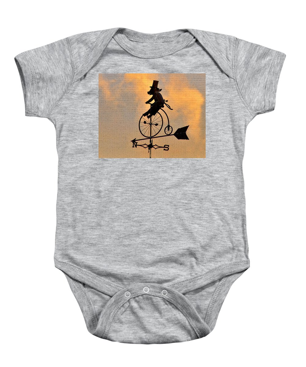 Art Baby Onesie featuring the photograph Cycling Pig by David Lee Thompson
