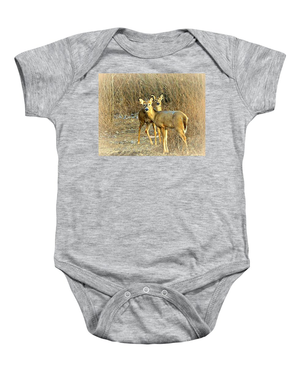 Deer Baby Onesie featuring the photograph Deer Duo by Marty Koch
