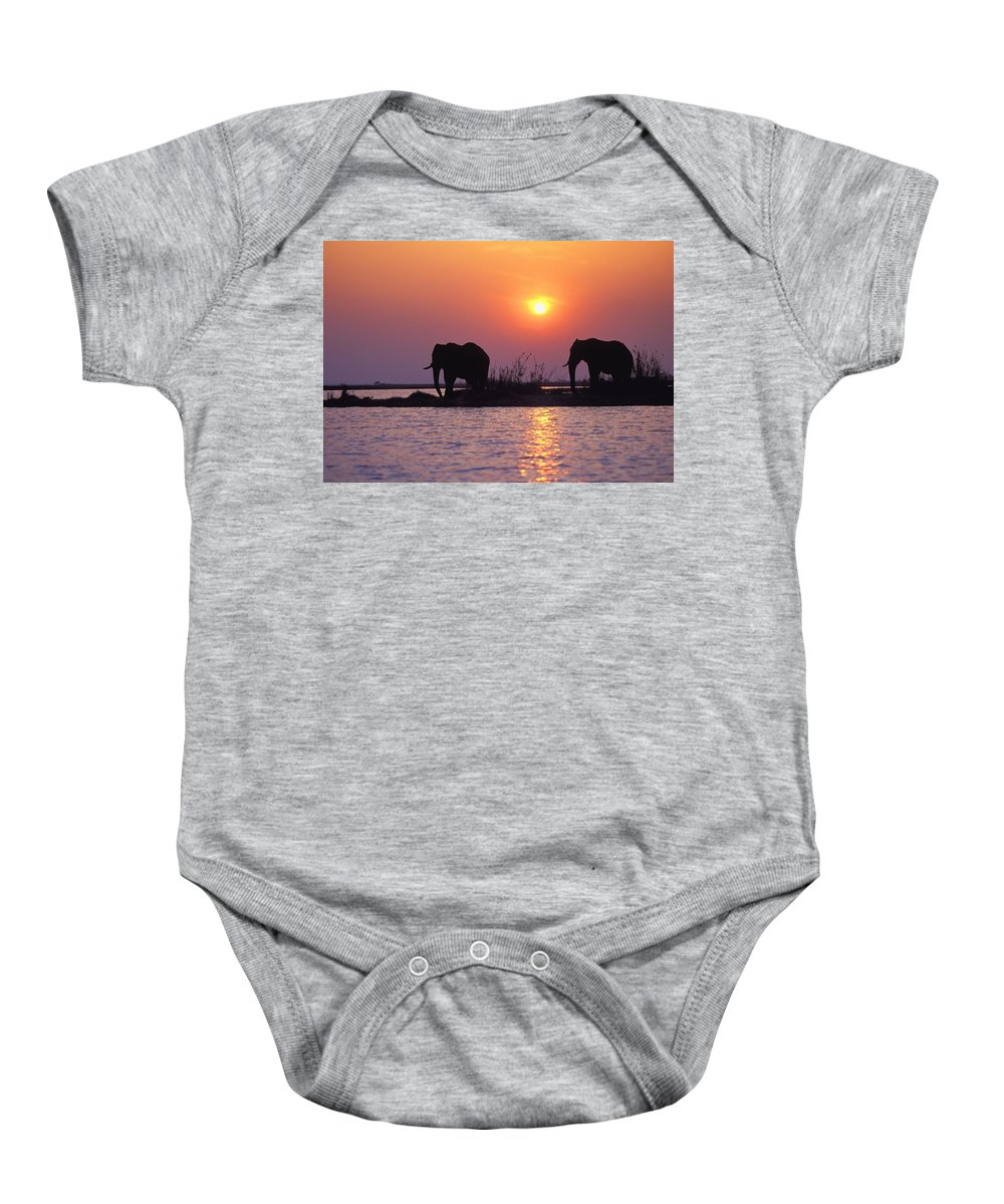 Outdoors Baby Onesie featuring the photograph Elephant Silhouettes by John Pitcher