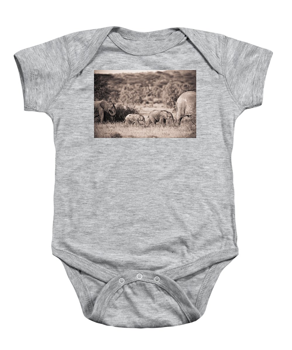 African Baby Onesie featuring the photograph Elephants Walking In A Row Samburu Kenya by David DuChemin