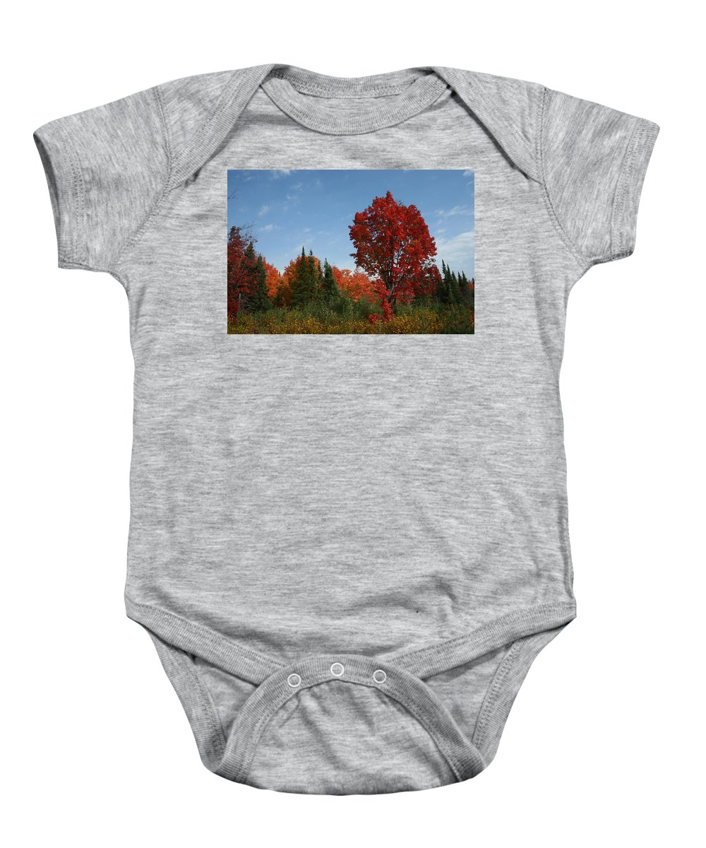 Baby Onesie featuring the photograph Fall Color by Joi Electa