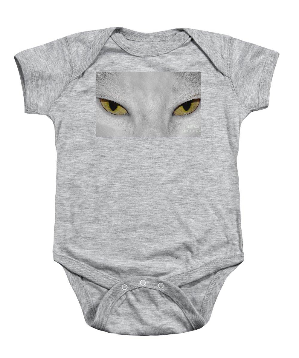 Cats Baby Onesie featuring the photograph Favorite Kitty by Evmeniya Stankova