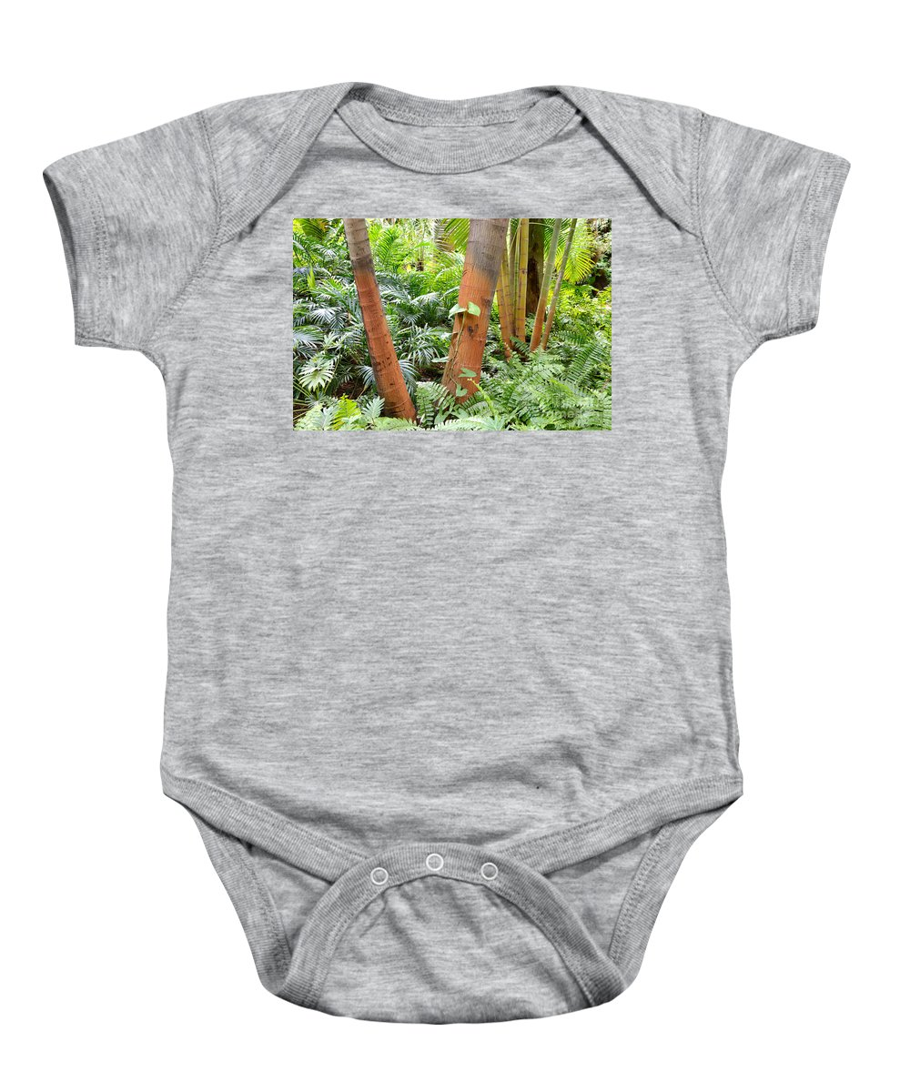 Ferns Baby Onesie featuring the photograph Florida Palms And Ferns by Carol Groenen