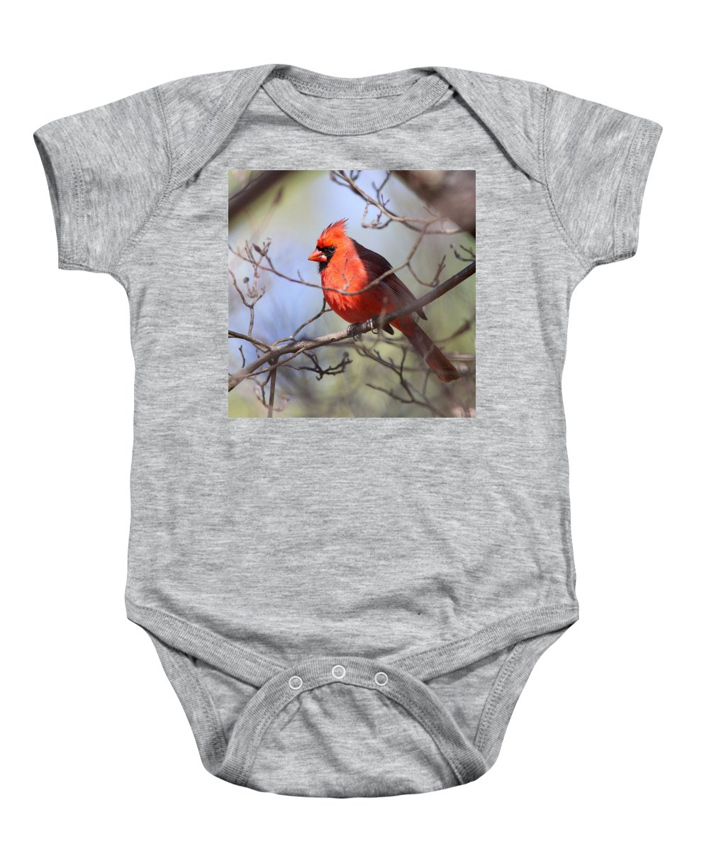 Baby Onesie featuring the photograph Framed by Travis Truelove