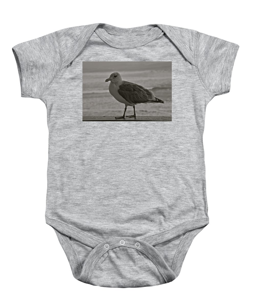 Seagull Baby Onesie featuring the photograph Friendly Gull by Eric Tressler