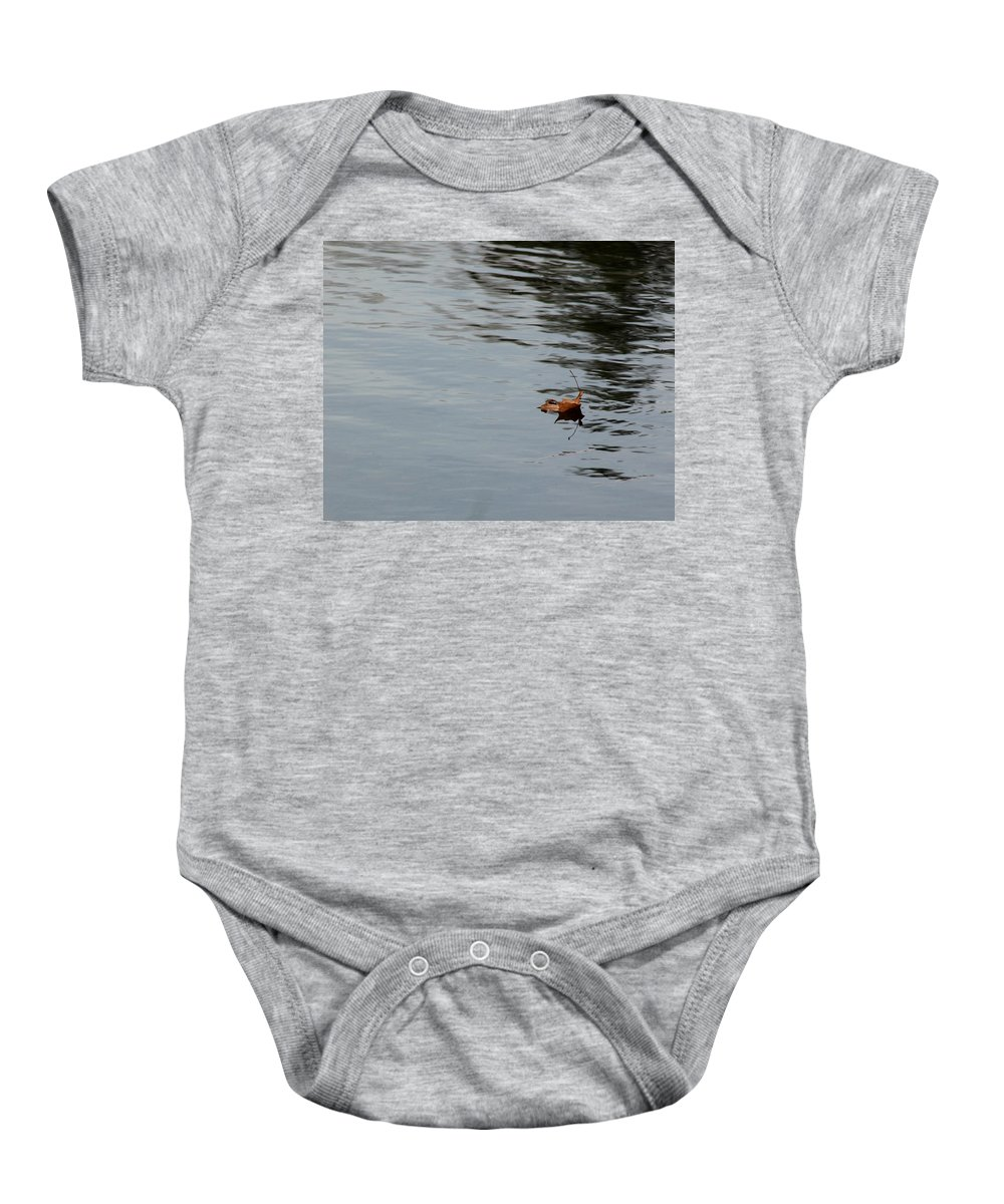 Usa Baby Onesie featuring the photograph Gliding Across The Pond by LeeAnn McLaneGoetz McLaneGoetzStudioLLCcom