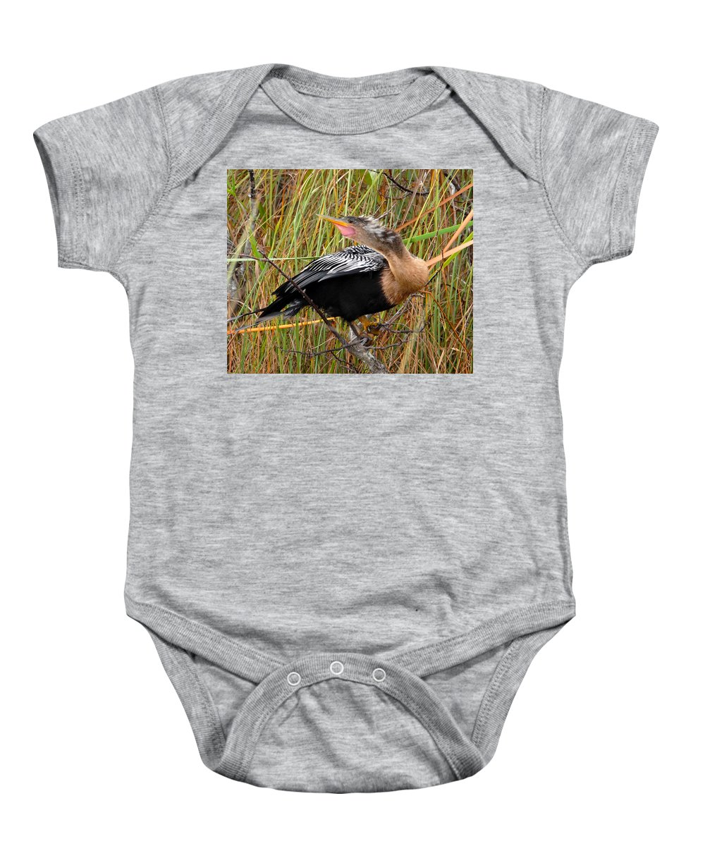 Golden Crested Anhinga Baby Onesie featuring the photograph Golden Bird by David Lee Thompson