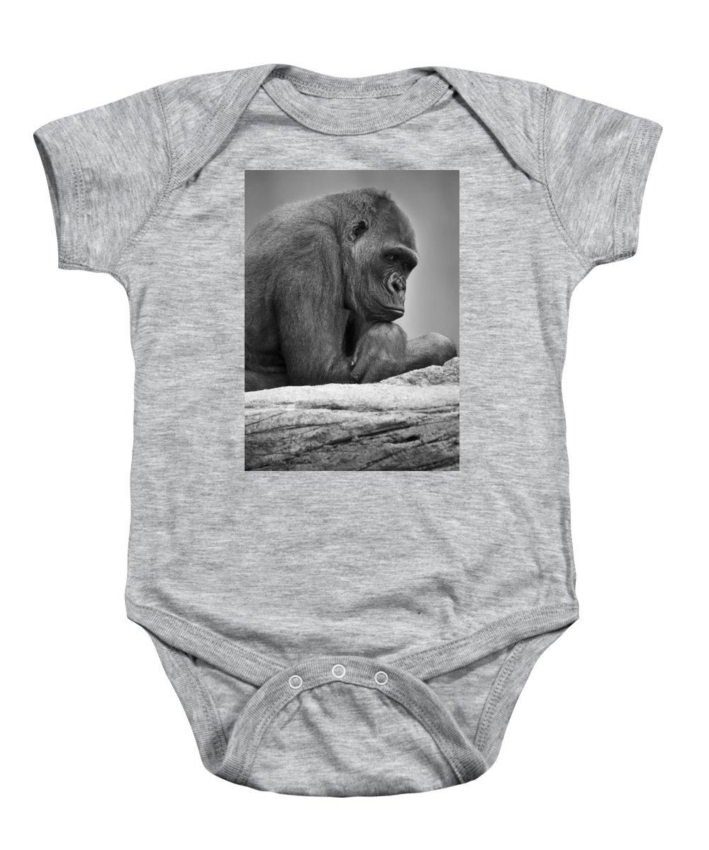 Outdoors Baby Onesie featuring the photograph Gorilla Portrait by Darren Greenwood