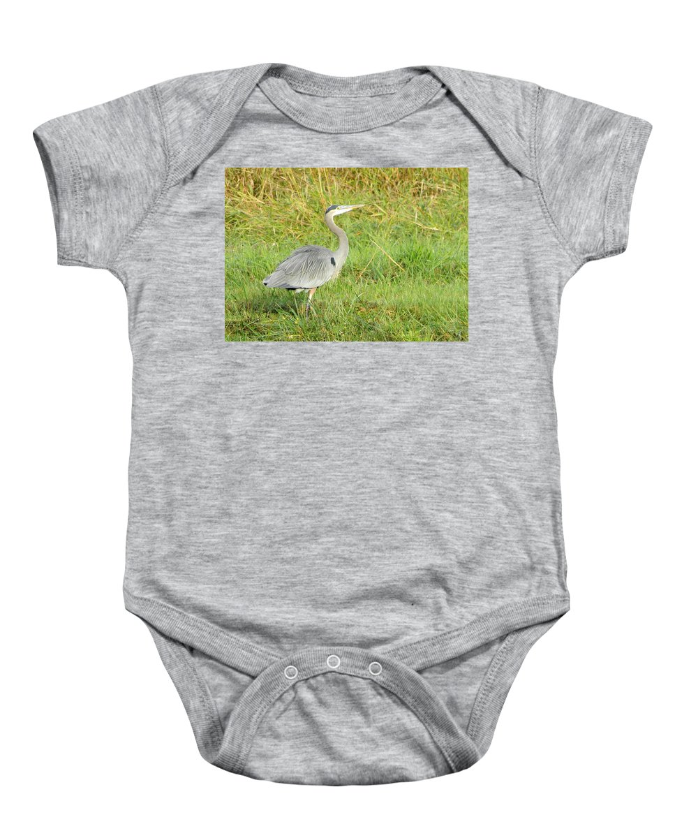 Heron Baby Onesie featuring the photograph Great Blue Heron by Jessica Lee