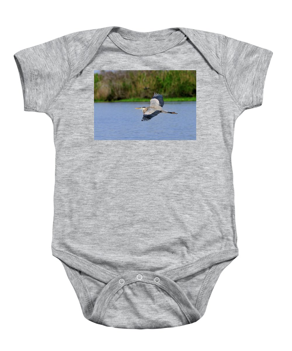 Great Baby Onesie featuring the photograph Great Blue Heron Soaring by Bill Dodsworth