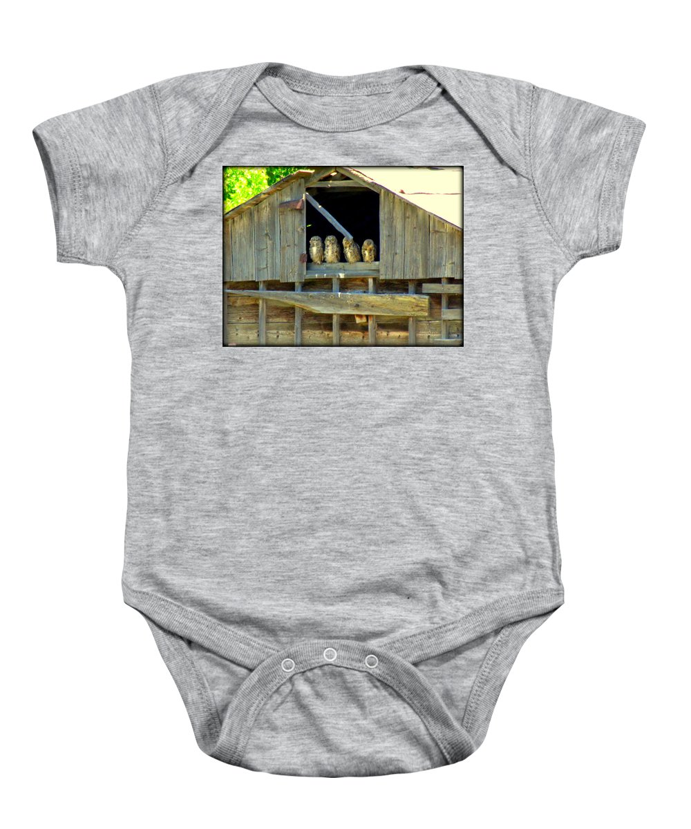 Old Barns Baby Onesie featuring the photograph Great Horned Owls by Judy Garrett